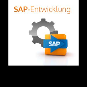SAP-Entwicklung